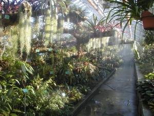 80 ans d 39 histoire et d 39 archives au jardin botanique de for Exposition serre de jardin