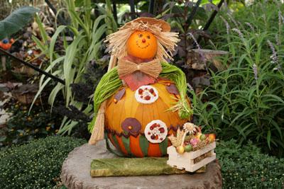 Citrouille 1 concours de citrouilles d cor es jardin for Decoration de jardin pour halloween