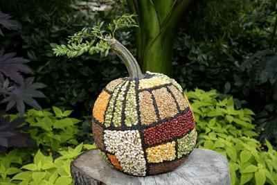 Citrouille 1 concours de citrouilles d cor es jardin for Bal des citrouilles jardin botanique