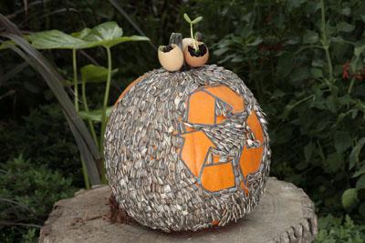 Citrouille 3 concours de citrouilles d cor es jardin for Bal des citrouilles jardin botanique