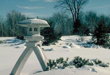 Le jardin et le pavillon japonais le programme d for Jardin botanique hiver 2015